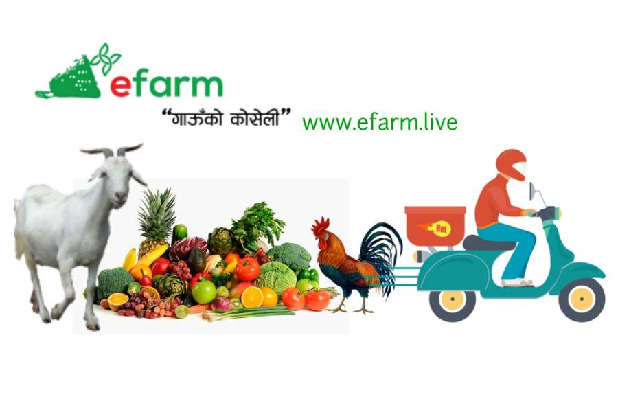 E-farm selling agro products online